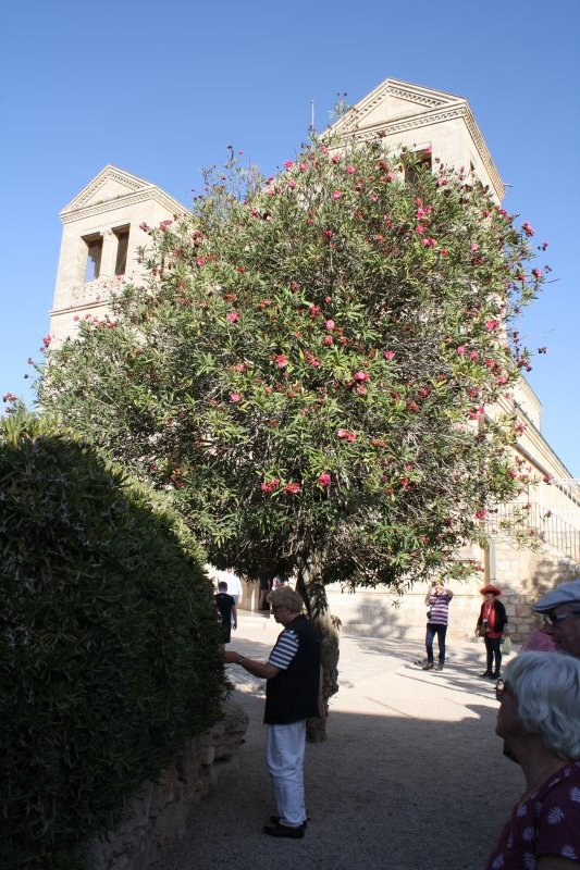 Kerk Jeruzalem