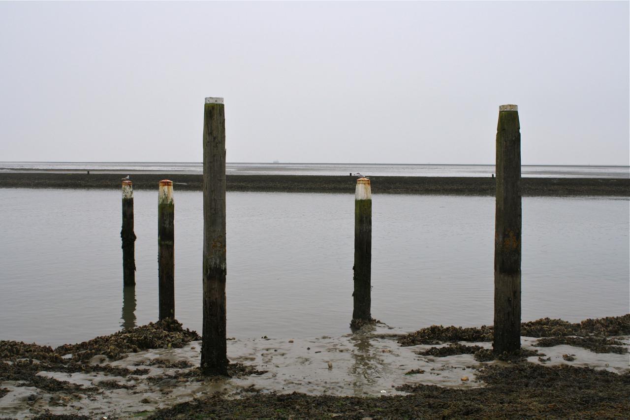 Haven Waddenzee