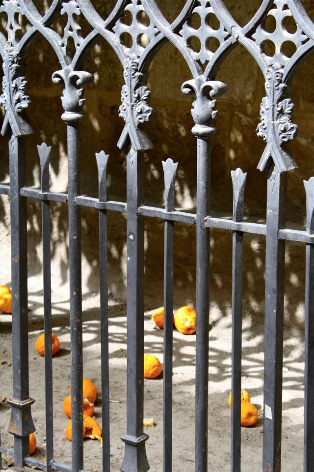 Valappels van oranje