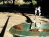 fontein_vondelpark_2-6irhbj4h5ctcqo4wsgsw8gckw-183ywgkcqd6u2o488ok8occg4-th_