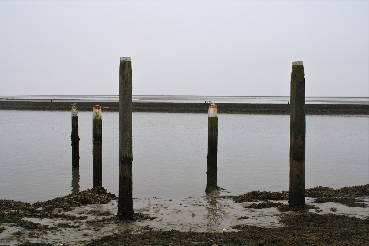 Haven Waddenzee