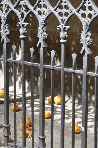 Appeltjes van Oranje