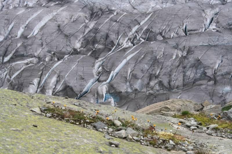 Spleten in het ijs